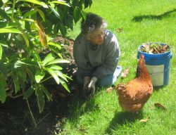 Gardening Companions - In Happier Times