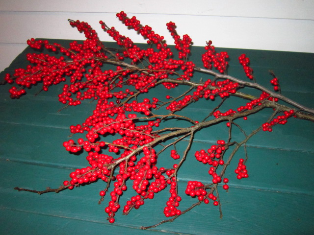 Holly Berries from Bradley