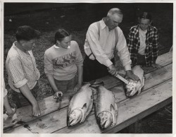 Charles Nelson Shows 4-H Kids the Fine Points of Fish Cleaning c. 1950s