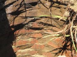 Brick Lining