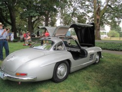 The Coveted Gullwing