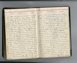 Medora's Diary