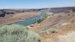 View of Snake River, Summer 2016
